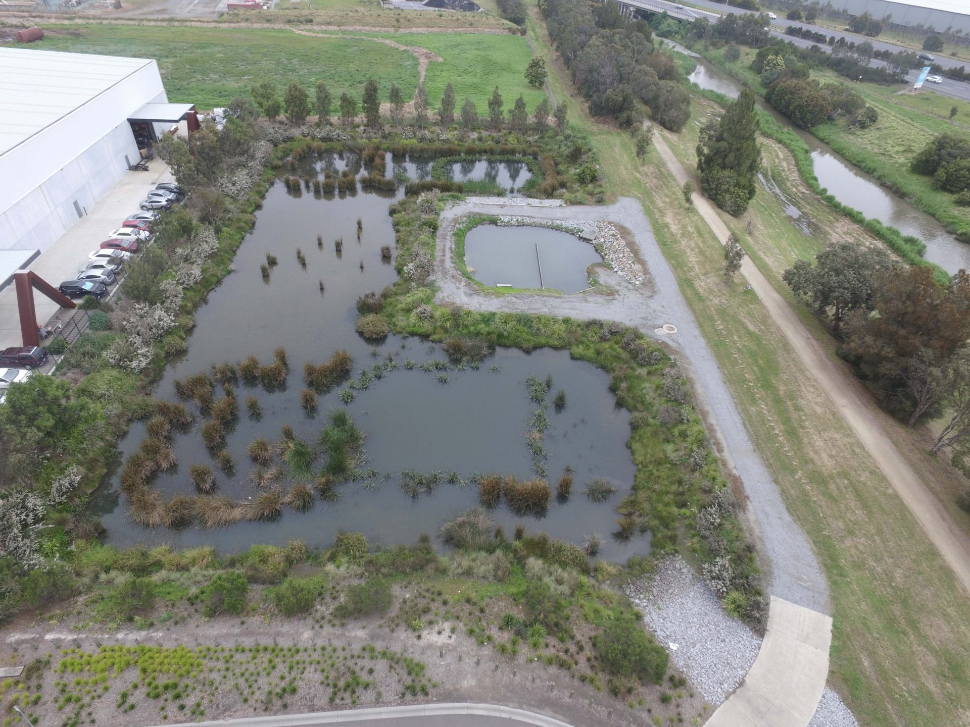 A constructed wetland used to filter and remove pollutants from stormwater before it enters local waterways