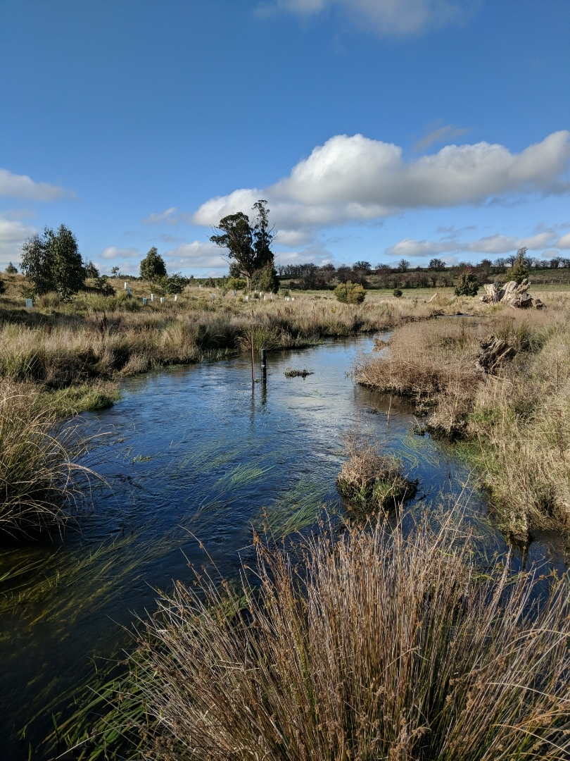 Stream sensors deployed in the Campaspe River